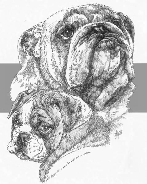 Drawing - English Bulldog And Pup by Barbara Keith
