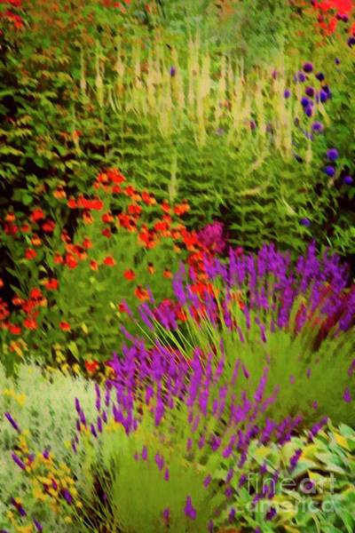 Photograph - English Flower Border Art by Martyn Arnold