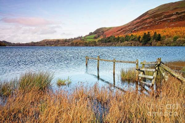 Photograph - English Lake District Autumn by Martyn Arnold