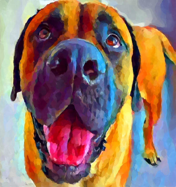 Wall Art - Painting - English Mastiff by Chris Butler