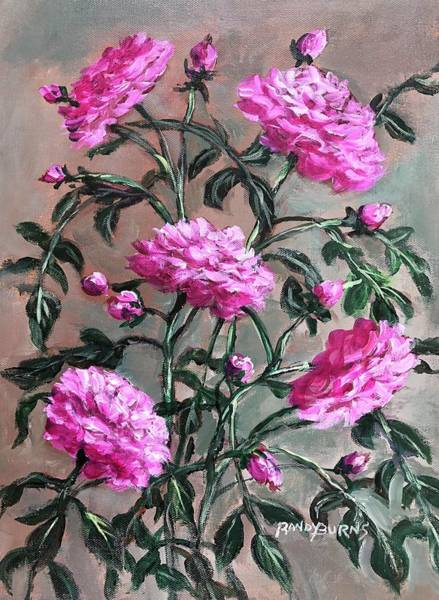 Wall Art - Painting - English Rose Gertrude Stein by Randy Burns