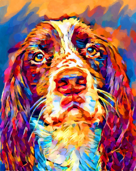 Wall Art - Painting - English Springer Spaniel 2 by Chris Butler