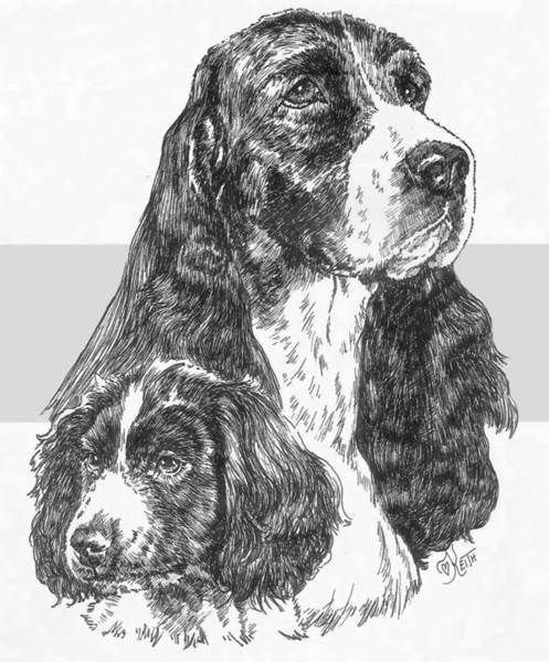 Drawing - English Springer Spaniel And Pup by Barbara Keith