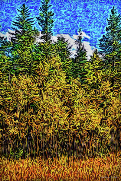Digital Art - Enter The Woods by Joel Bruce Wallach