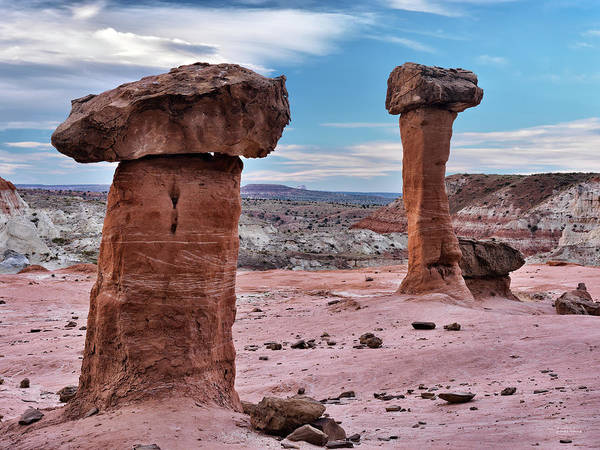 Photograph - Entrada Sandstone Formations by Leland D Howard