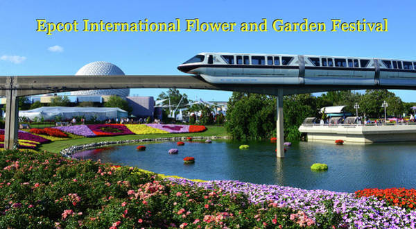 Wall Art - Photograph - Epcot Flower And Garden Pano Poster A by David Lee Thompson