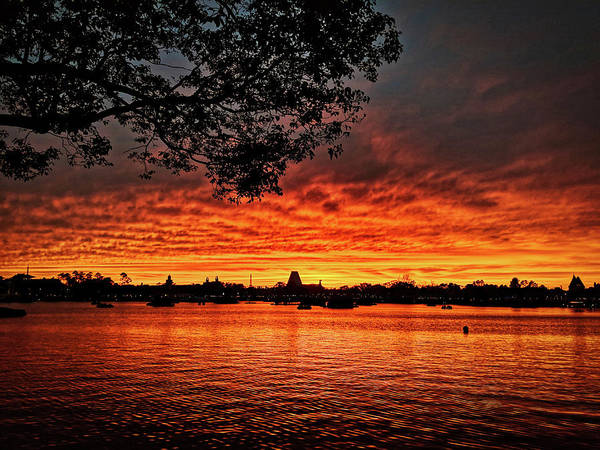 Photograph - Epcot Sunset by Portia Olaughlin