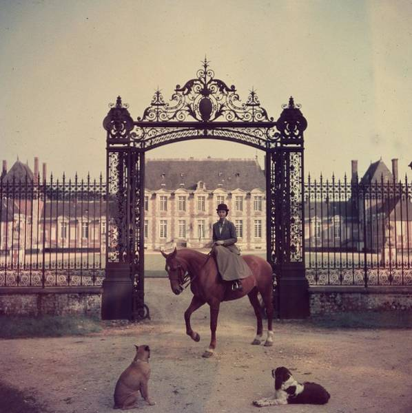 Domestic Animals Photograph - Equestrian Entrance by Slim Aarons