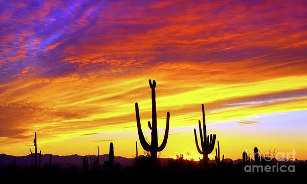 Wall Art - Photograph - Equinox Sunset - Mural by Douglas Taylor