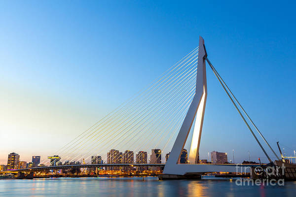 Wall Art - Photograph - Erasmus Bridge Over The River Meuse In by Vichie81