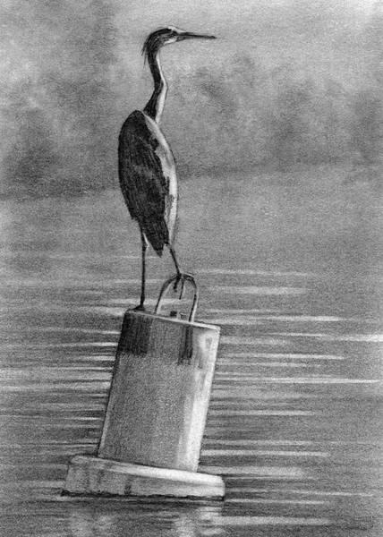 Great Blue Heron Drawing - Erie Heron On Bouy by Bill Finewood