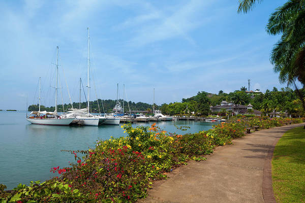 Jamaica Photograph - Errol Flynn Marina, Port Antonio by Douglas Pearson