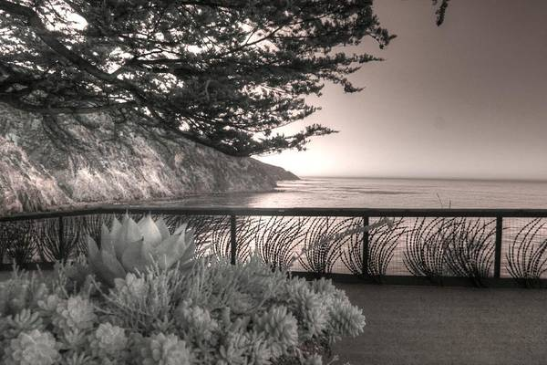 Wall Art - Photograph - Esalen Institute Big Sur California Infrared by Jane Linders