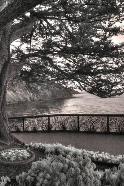 Wall Art - Photograph - Esalen Institute Big Sur Infrared Landscape Succulents by Jane Linders