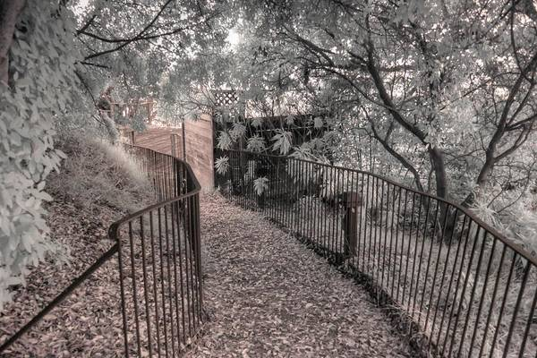 Wall Art - Photograph - Esalen Path Fence Big Sur Infrared by Jane Linders