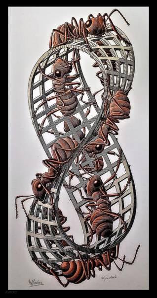 Photograph - Escher 107 by Rob Hans