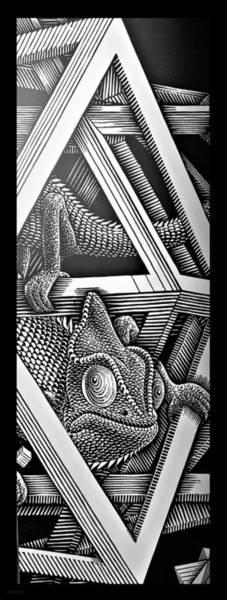 Photograph - Escher 110 by Rob Hans