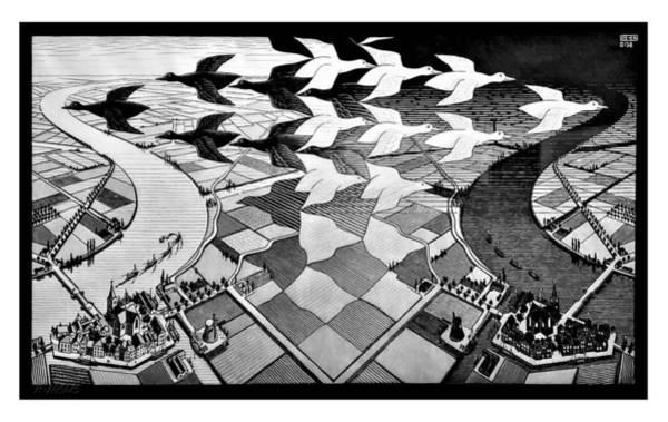 Photograph - Escher 117 by Rob Hans