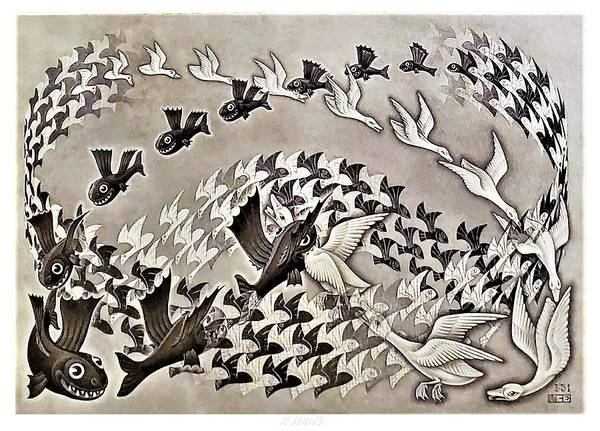 Photograph - Escher 120 by Rob Hans