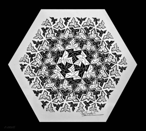 Photograph - Escher 141 by Rob Hans