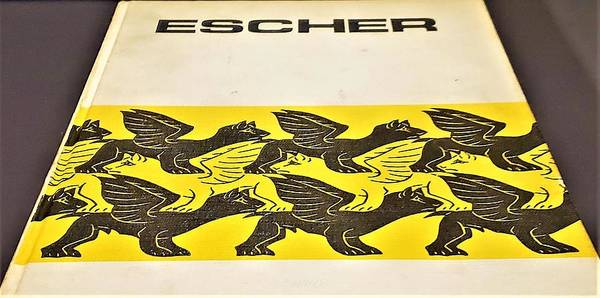 Photograph - Escher 149 by Rob Hans