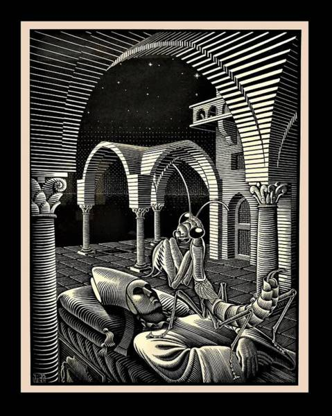 Photograph - Escher 166 by Rob Hans