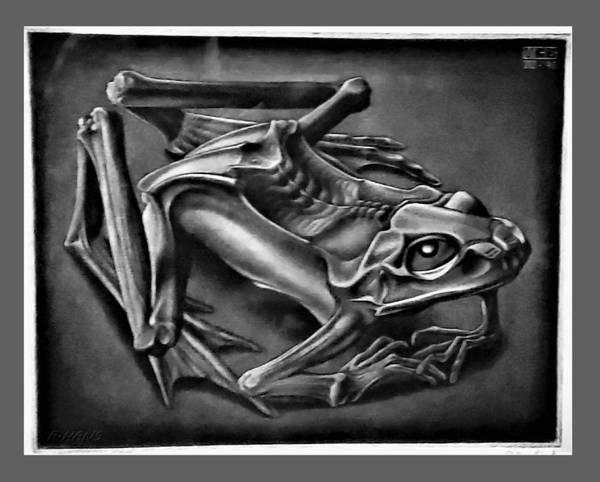 Photograph - Escher 41 by Rob Hans