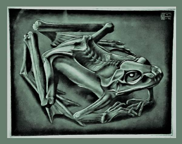 Photograph - Escher 42 by Rob Hans