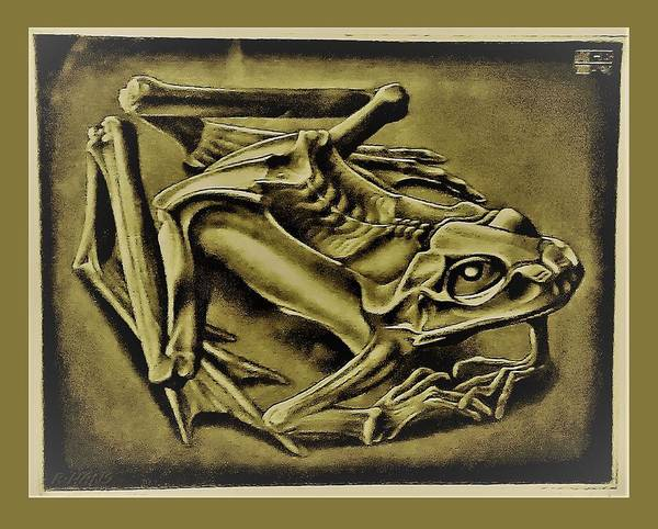 Photograph - Escher 43 by Rob Hans
