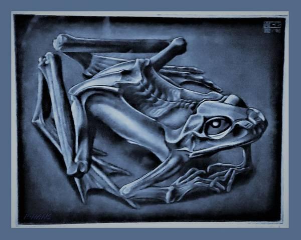 Photograph - Escher 44 by Rob Hans