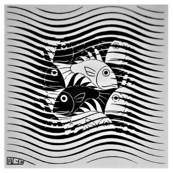 Photograph - Escher 74 by Rob Hans