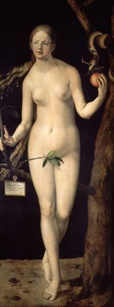 Wall Art - Painting - Eve', 1507, Oil On Panel, 209 Cm X 80 Cm, P02178. Albrecht Durer . by Albrecht Durer -1471-1528-