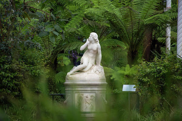 Photograph - Eve - Glasgow Botanic Gardens by Bill Cannon