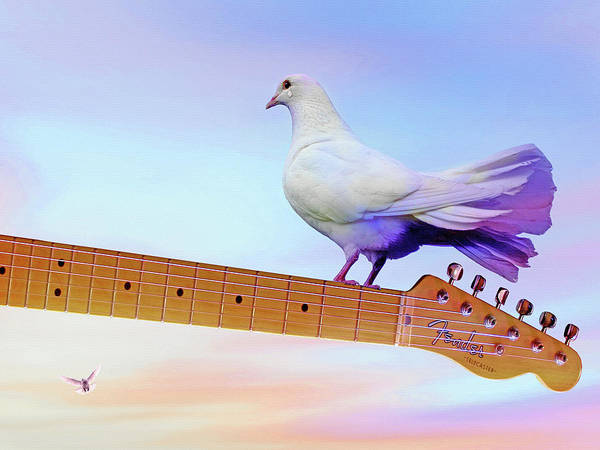 Wall Art - Mixed Media - Even Doves Cry by Mal Bray