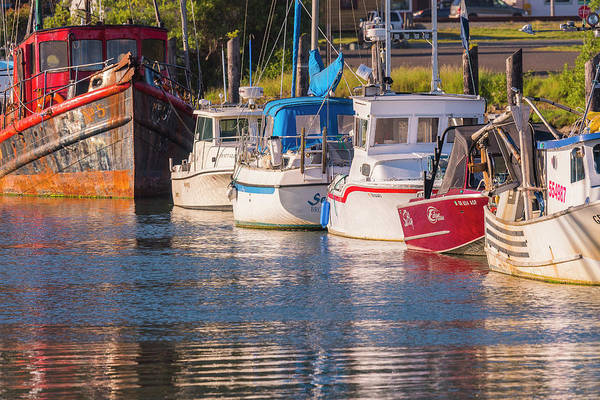 Photograph - Evening At The Harbor by Robert Potts