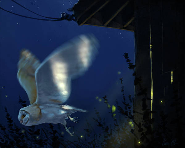 Birds Of Prey Wall Art - Digital Art - Evening Ghost - Barn Owl by Aaron Blaise
