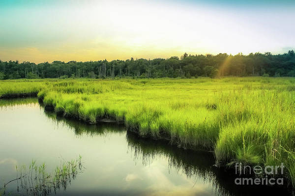 Wall Art - Photograph - Evening Glow by Colleen Kammerer