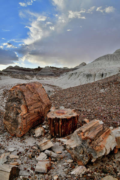 Photograph - Evening In Blue Mesa Basin Of Petrified Forest Np by Ray Mathis