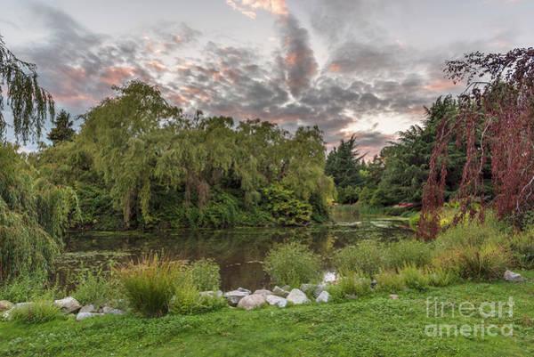 Evening Wall Art - Photograph - Evening Landscape At Sunset In The City Park by Viktor Birkus