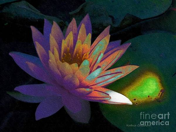 Digital Art - Evening Light by Kathie Chicoine