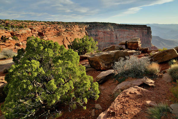 Photograph - Evening Light On Oranges Cliffs Of Canyonlands by Ray Mathis