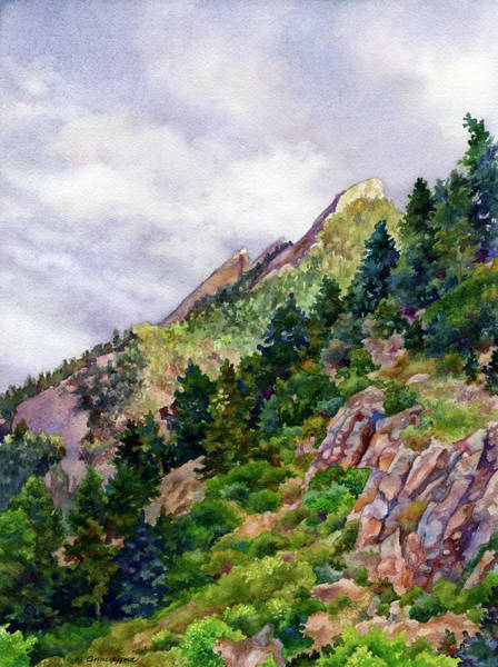 Painting - Evening On Flagstaff by Anne Gifford