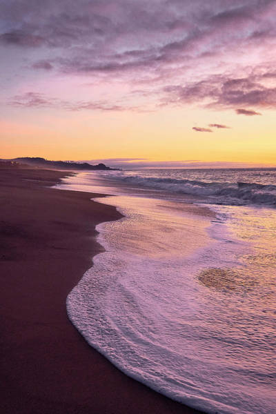 Photograph - Evening On Gleneden Beach by Whitney Goodey