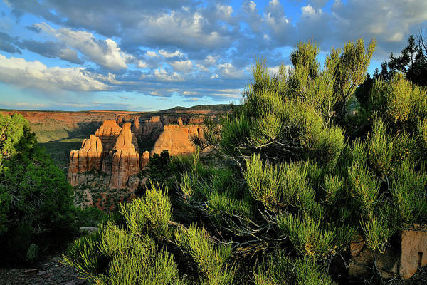 Photograph - Evening Sun On Colorado National Monument by Ray Mathis