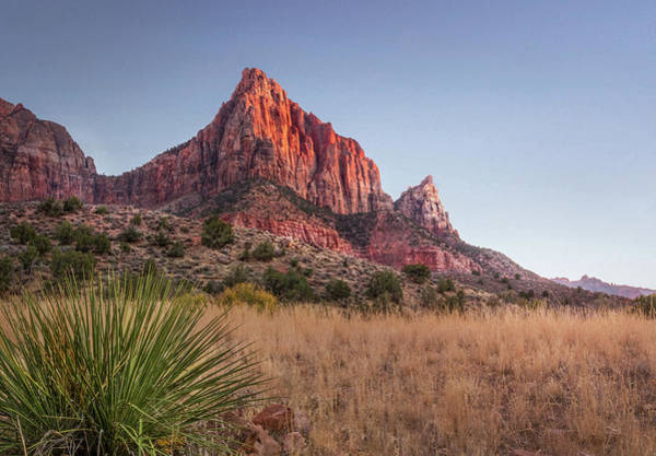 Photograph - Evening Vista At Zion by James Woody
