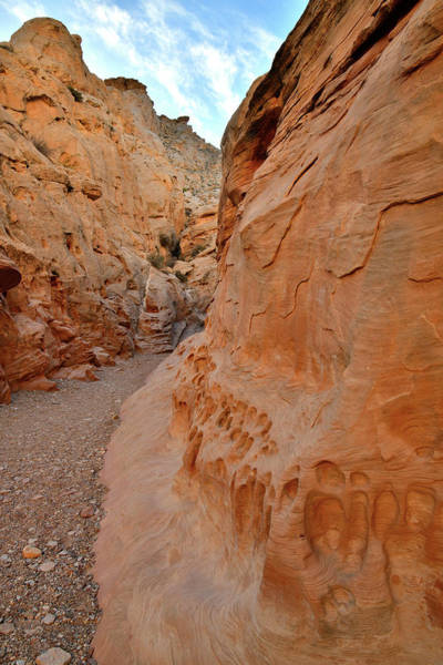 Photograph - Evening Walk In Little Wild Horse Canyon by Ray Mathis