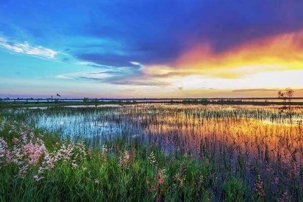 Photograph - Evening's Last Breath Of Color by Debra and Dave Vanderlaan