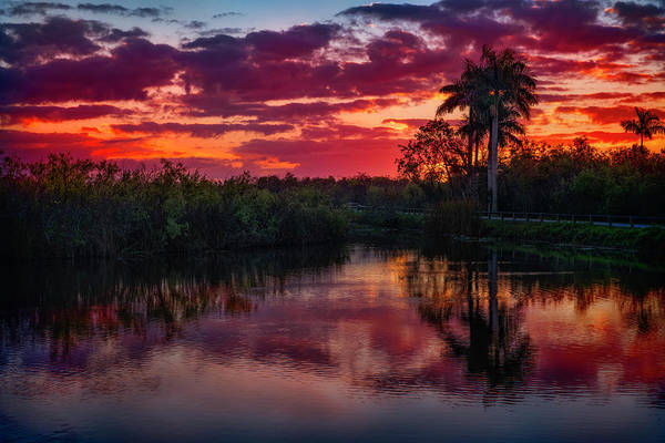 Photograph - Everglade Sunrise by Michael Ash