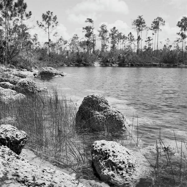 Photograph - Everglades Lake 041902 by Rudy Umans