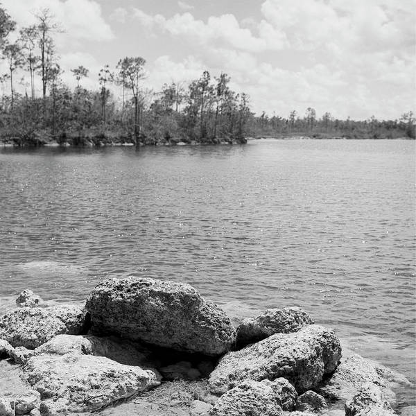 Photograph - Everglades Lake 041906 by Rudy Umans